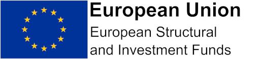 European Union logo for footer